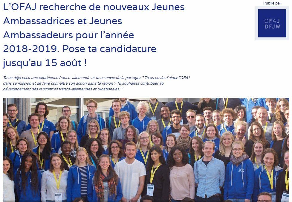 Rejoins le réseau des « Jeunes Ambassadeurs OFAJ »