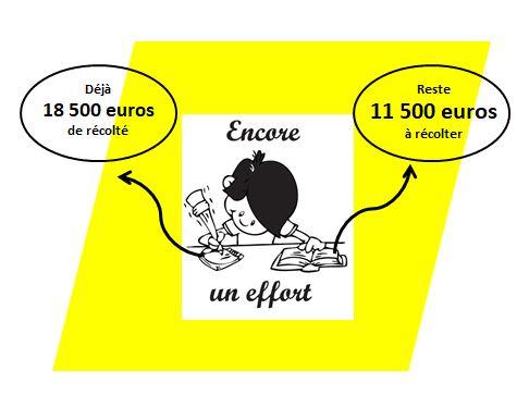 La Maison de l'Europe en Mayenne d'un dernier coup de pouce !